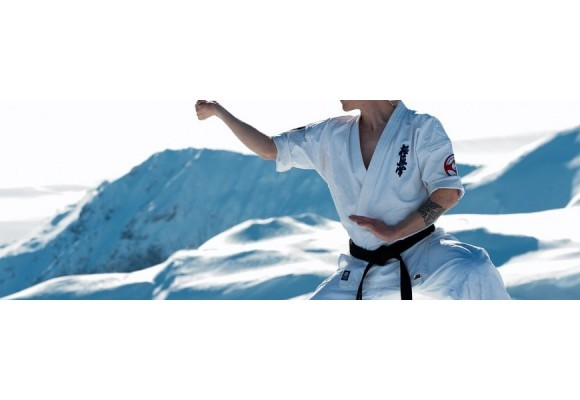 Was ist das Kyokushinkai Karate?